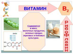 ВИТАМИН B2 Содержится: в мясе, молочных продуктах, зеленых овощах, зерновых и