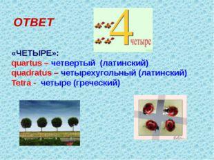 ОТВЕТ «ЧЕТЫРЕ»: quartus – четвертый (латинский) quadratus – четырехугольный (