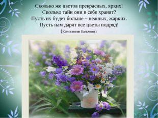 Сколько же цветов прекрасных, ярких! Сколько тайн они в себе хранят? Пусть их