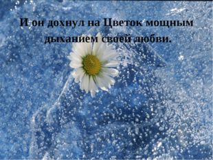 И он дохнул на Цветок мощным дыханием своей любви.