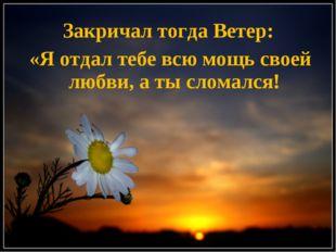 Закричал тогда Ветер: «Я отдал тебе всю мощь своей любви, а ты сломался!