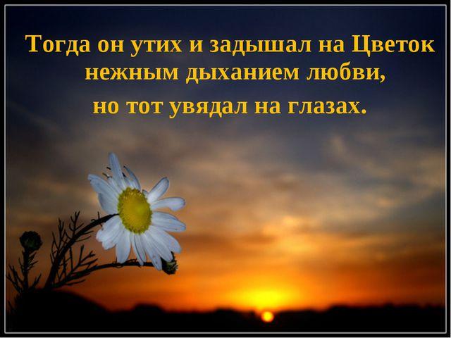Тогда он утих и задышал на Цветок нежным дыханием любви, но тот увядал на гла...