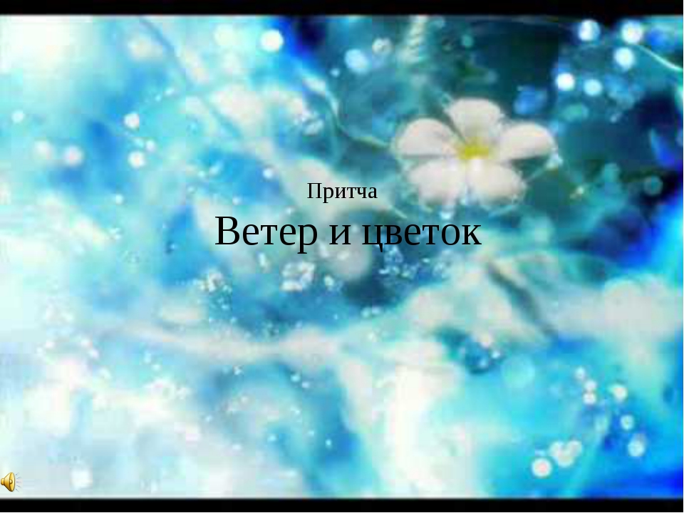 Притча Ветер и цветок