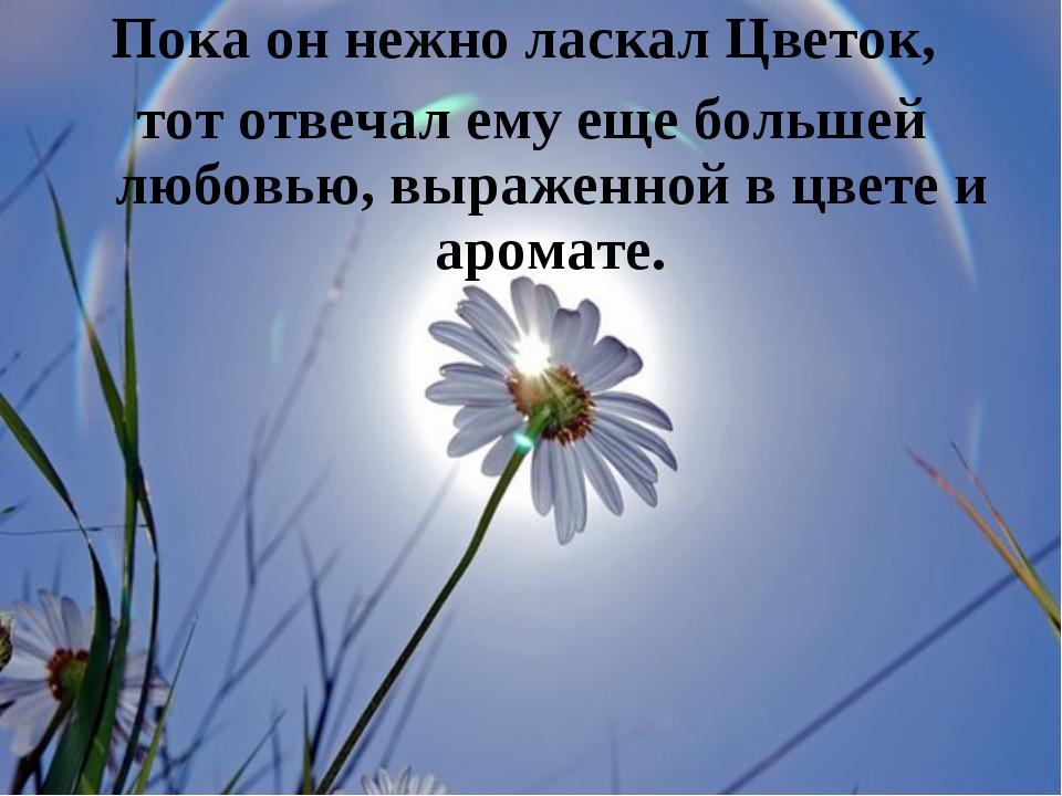 Пока он нежно ласкал Цветок, тот отвечал ему еще большей любовью, выраженной...