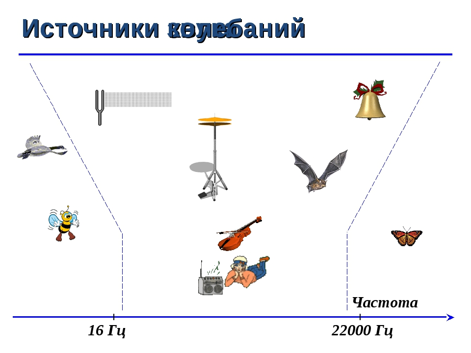 Частота Источники звука Источники колебаний