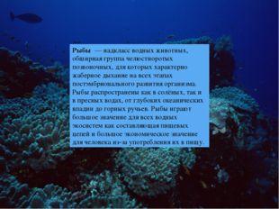 Рыбы — надкласс водных животных, обширная группа челюстноротых позвоночных,