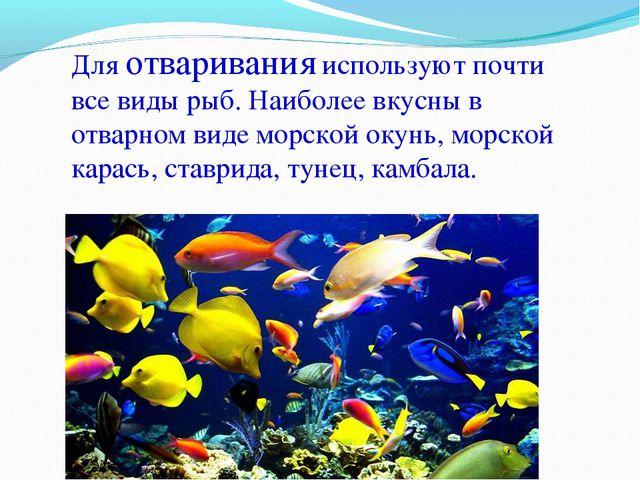 Для отваривания используют почти все виды рыб. Наиболее вкусны в отварном вид...