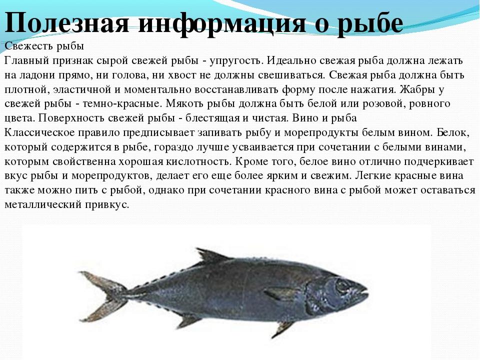 Полезная информация о рыбе Свежесть рыбы Главный признак сырой свежей рыбы -...