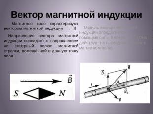 Вектор магнитной индукции Магнитное поле характеризуют вектором магнитной инд