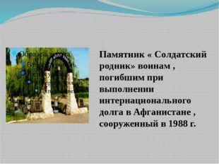 Памятник « Солдатский родник» воинам , погибшим при выполнении интернациональ