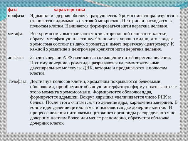 фаза характерстика профаза Ядрышки и ядерная оболочка разрушается. Хромосомы...