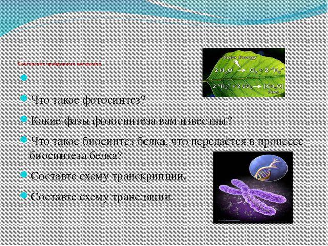 Повторение пройденного материала. Что такое фотосинтез? Какие фазы фотосинте...