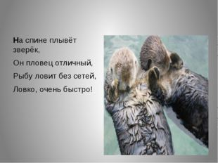 На спине плывёт зверёк, Он пловец отличный, Рыбу ловит без сетей, Ловко, оче