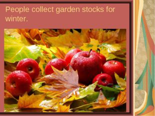 People collect garden stocks for winter.