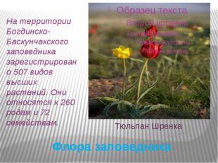Флора заповедника На территории Богдинско-Баскунчакского заповедника зарегист