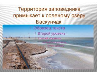 Территория заповедника примыкает к соленому озеру Баскунчак.