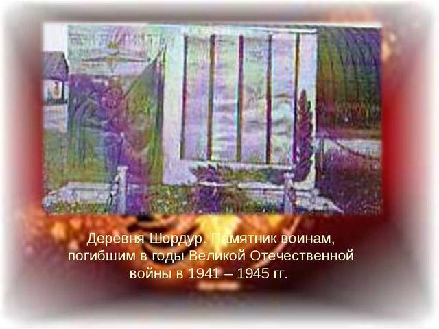 Деревня Шордур. Памятник воинам, погибшим в годы Великой Отечественной войны...