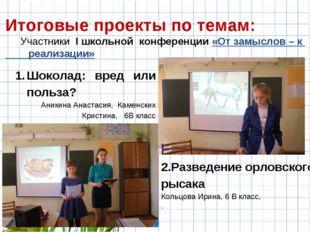 Итоговые проекты по темам: Участники I школьной конференции «От замыслов – к