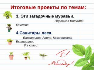 3. Эти загадочные муравьи. Пирожков Виталий 6а класс 4.Санитары леса. Башкирц