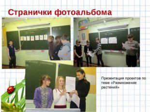 Странички фотоальбома Презентация проектов по теме «Размножение растений»
