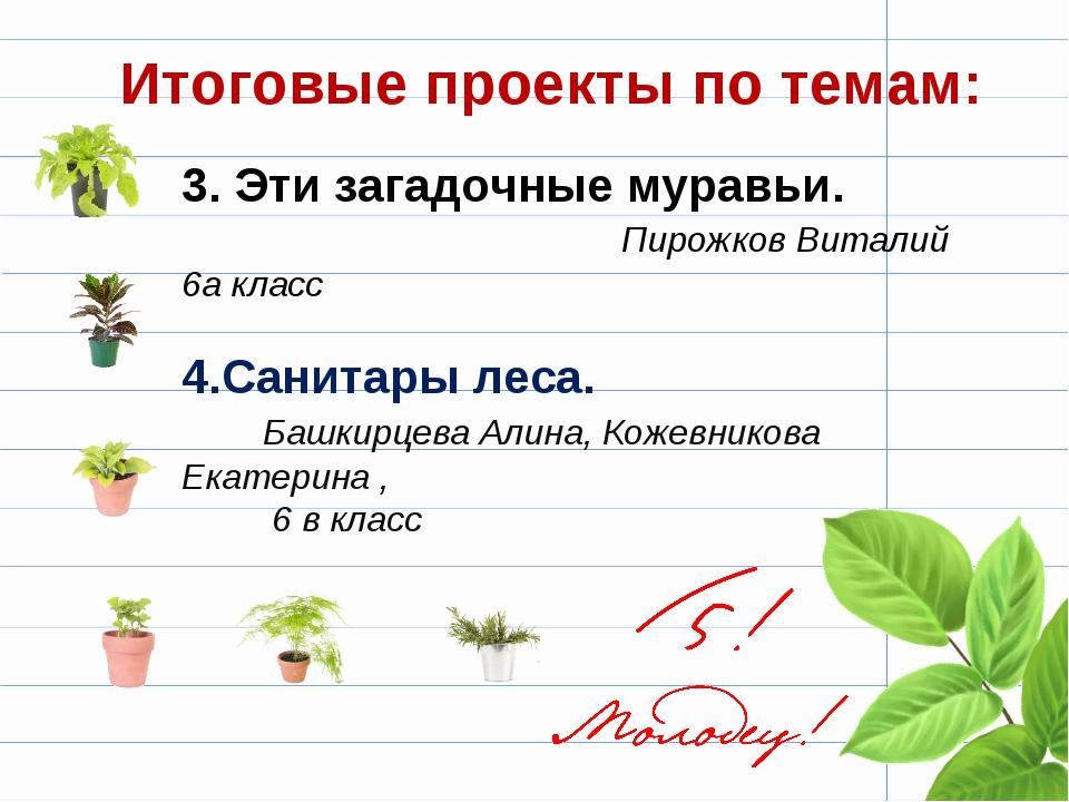 3. Эти загадочные муравьи. Пирожков Виталий 6а класс 4.Санитары леса. Башкирц...