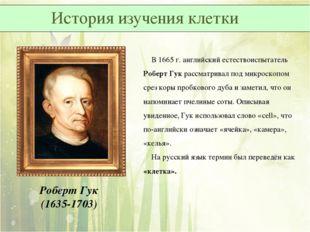 Роберт Гук (1635-1703) В 1665 г. английский естествоиспытатель Роберт Гук рас