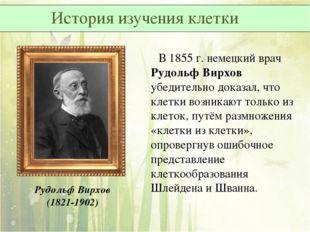 В 1855 г. немецкий врач Рудольф Вирхов убедительно доказал, что клетки возни