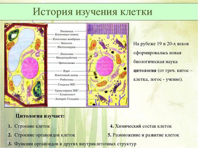 На рубеже 19 и 20-х веков сформировалась новая биологическая наука цитология...