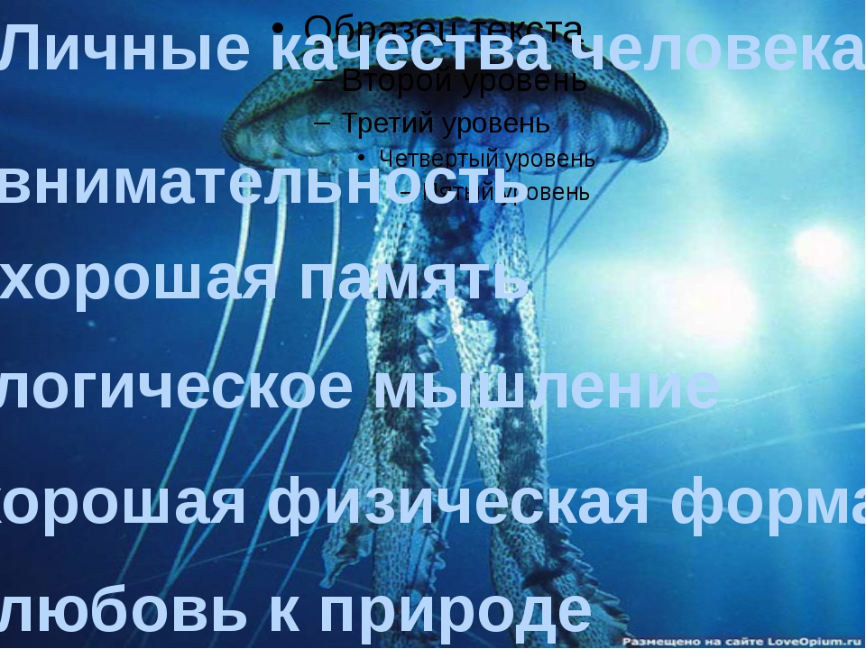 Личные качества человека: -внимательность -хорошая память -логическое мышлен...