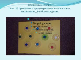 Волшебный коврик. Цель: Исправления и предотвращения плоскостопия, закаливани