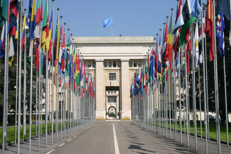 ООН критикует китайский режим в своем ежегодном отчете о пыт…