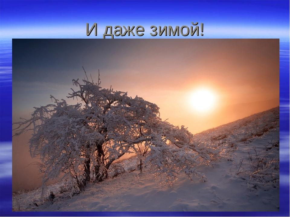 И даже зимой!
