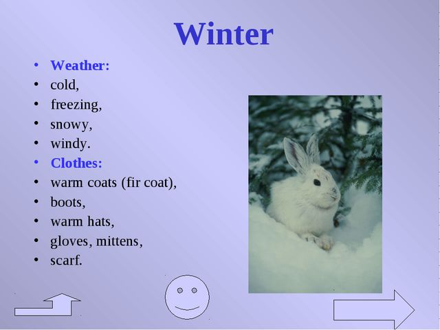 Winter Weather: cold, freezing, snowy, windy. Clothes: warm coats (fir coat),...