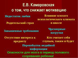 Е.В. Камаровская о том, что снижает мотивацию Недостаток любви Влияние плохог