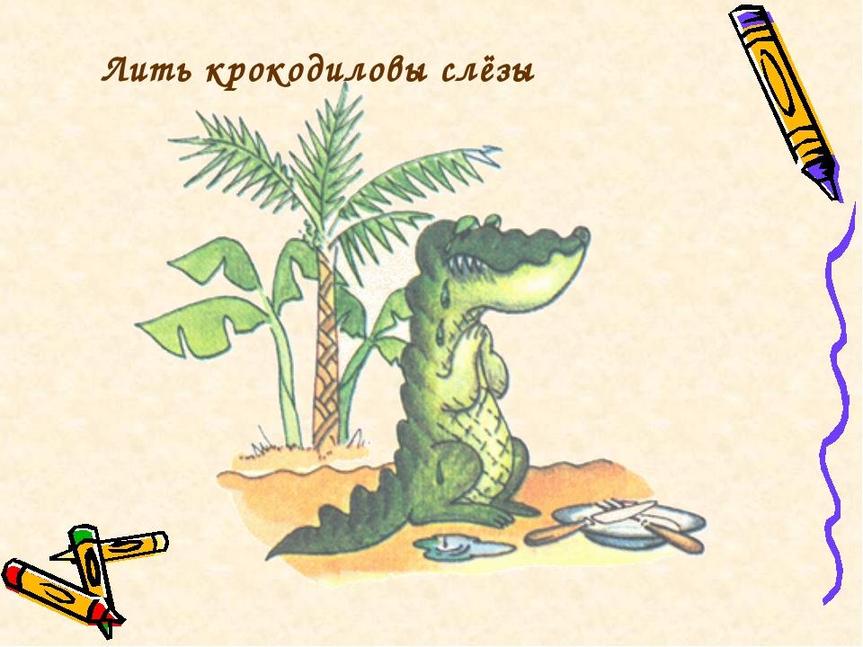 Лить крокодиловы слёзы