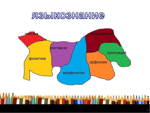 * лексика фонетика синтаксис морфология орфография пунктуация орфоэпия