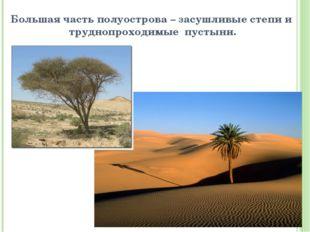 Большая часть полуострова – засушливые степи и труднопроходимые пустыни.