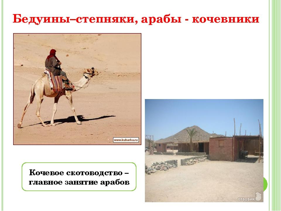 Бедуины–степняки, арабы - кочевники Кочевое скотоводство – главное занятие ар...