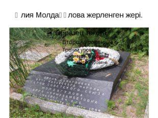 Әлия Молдағұлова жерленген жері.