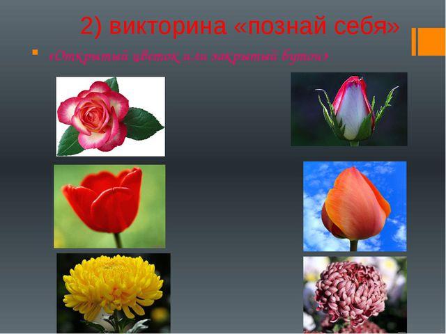 2) викторина «познай себя» «Открытый цветок или закрытый бутон»