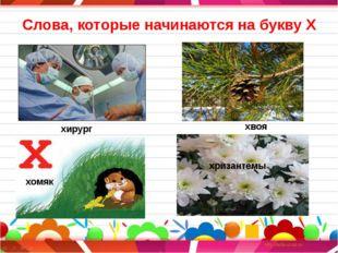 Слова, которые начинаются на букву Х хирург хвоя хомяк хризантемы хомяк