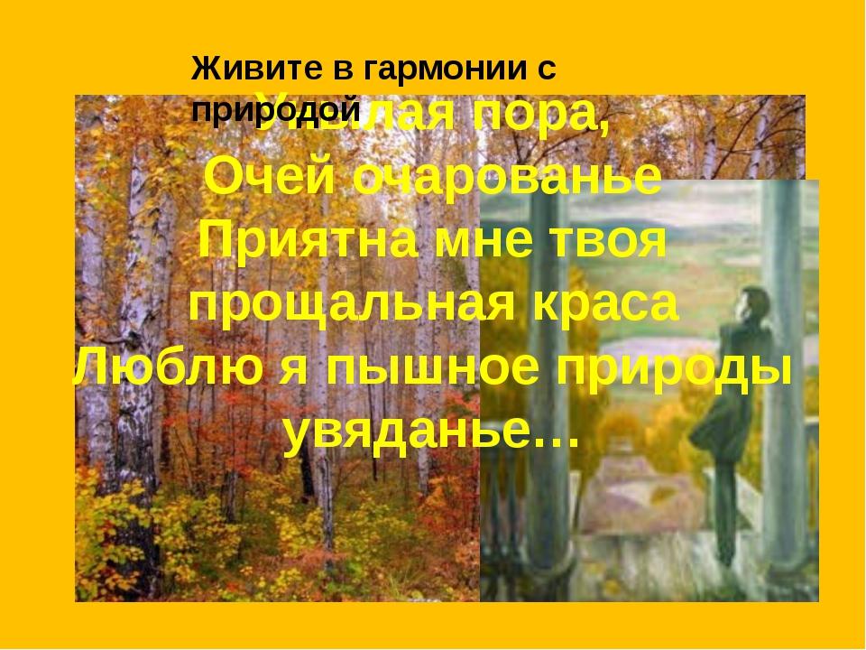 Унылая пора, Очей очарованье Приятна мне твоя прощальная краса Люблю я пышное...