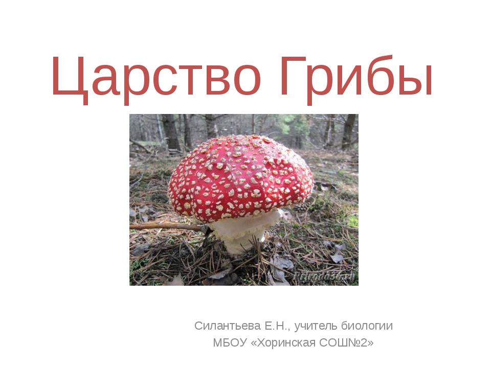 Царство Грибы Силантьева Е.Н., учитель биологии МБОУ «Хоринская СОШ№2»