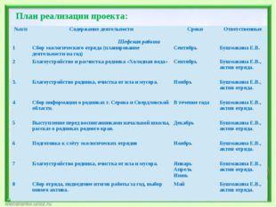 План реализации проекта: №п/п Содержание деятельности Сроки Ответственные Шеф
