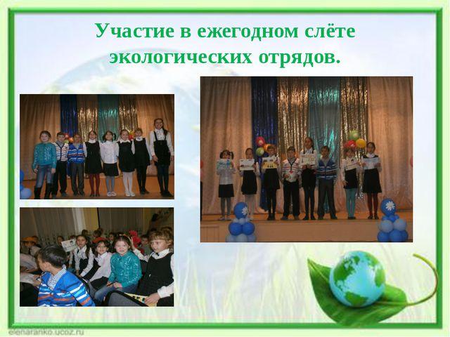 Участие в ежегодном слёте экологических отрядов.