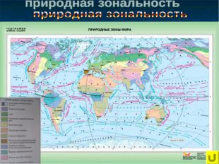 Арктические пустыни; Тундра; Лесотундра; Тайга; Смешанные и широколиственные