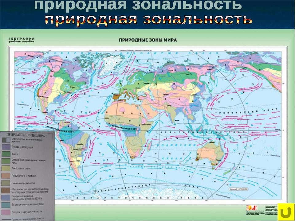 Арктические пустыни; Тундра; Лесотундра; Тайга; Смешанные и широколиственные...