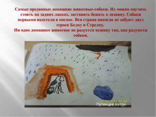 Путинцев Антон