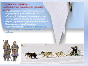 Промыслы эвенов — рыболовство, разведение ездовых собак Традиционное хозяйств