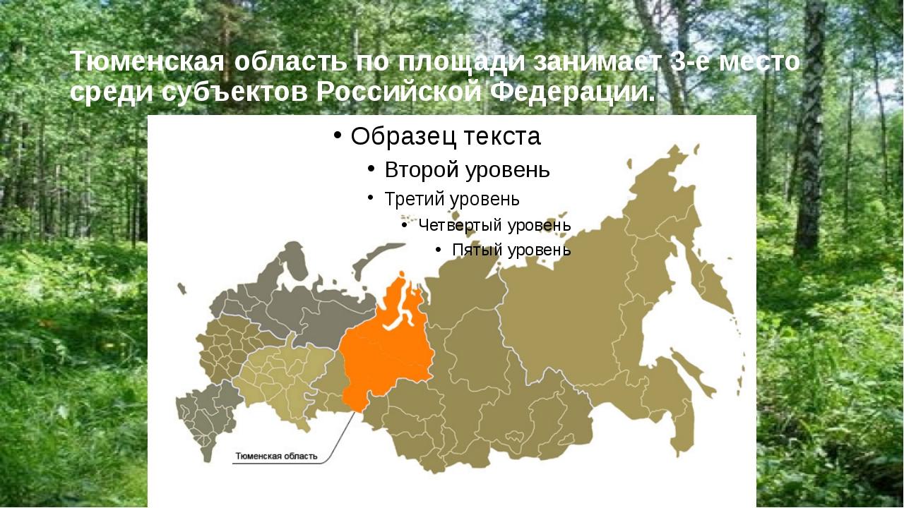 Тюменская область по площади занимает 3-е место среди субъектов Российской Фе...